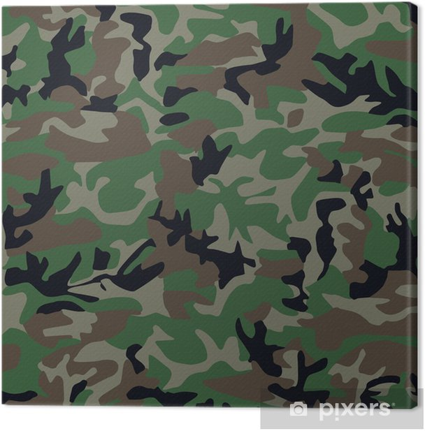 camouflage pattern Canvas Print - Themes