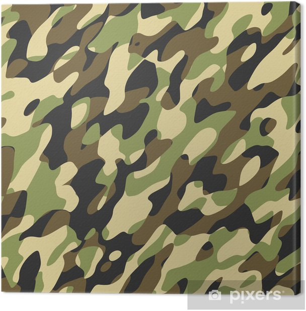 camouflage Canvas Print - Themes