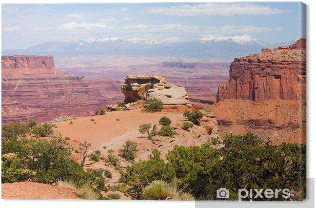 Canyonlands National Park, Utah USA Canvas Print - Themes