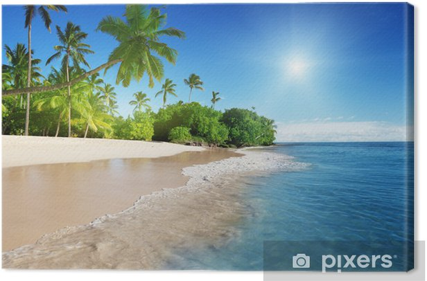 caribbean sea and palms Canvas Print - Themes