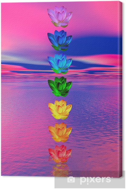 Chakra colors of lily flower Canvas Print - Signs and Symbols