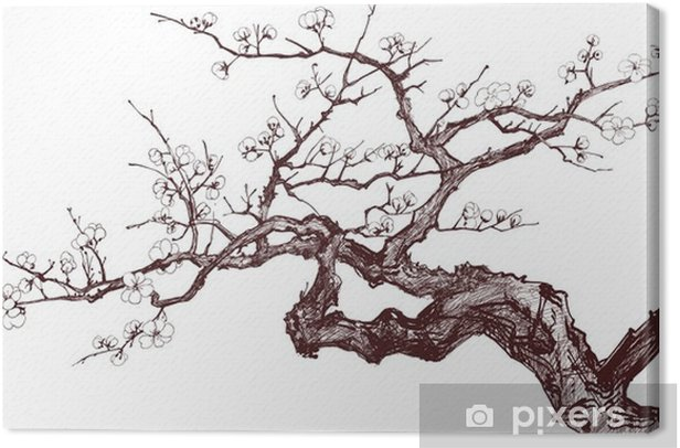 Cherry Tree Canvas Print - Styles