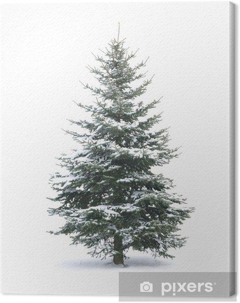 Christmas tree Canvas Print - International Celebrations