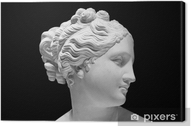 Classic white bust of Greek goddess isolated on black Canvas Print - Art and Creation