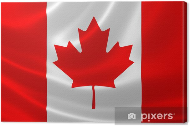 Close Up Of Canadian Flag Canvas Print Pixers We Live To Change