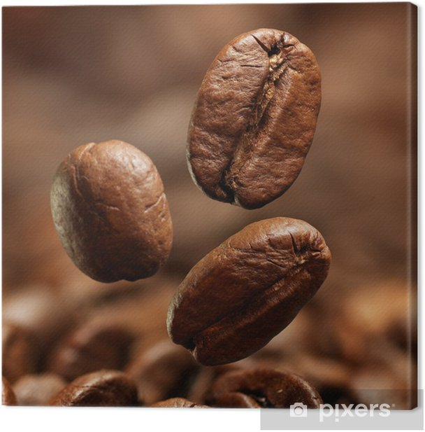 Closeup of coffee beans Canvas Print - Themes