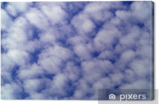 cloudy sky Canvas Print - Skies