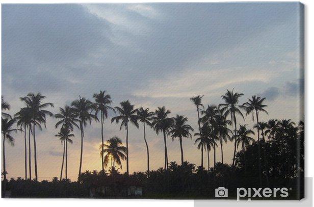 Coconut palms Canvas Print - Wonders of Nature