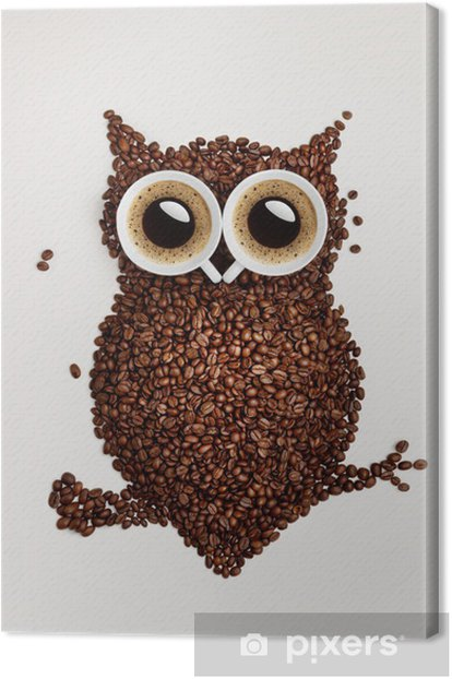 Coffee owl. Canvas Print -