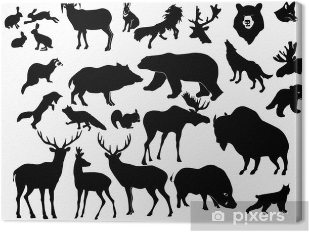 collection of forest animals Canvas Print - Mammals