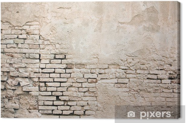 Colored old grunge brick wall with damaged stucco Canvas Print - Themes