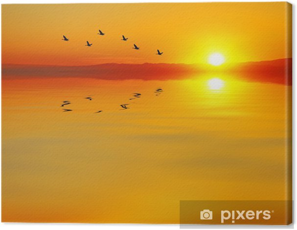 cruzando el mar Canvas Print - Water