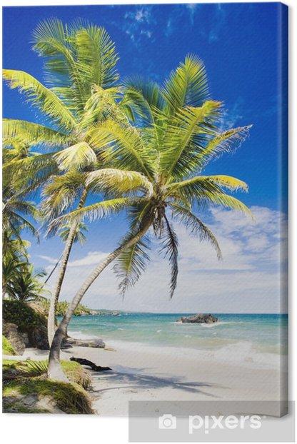 Cumana Bay, Trinidad Canvas Print - Themes