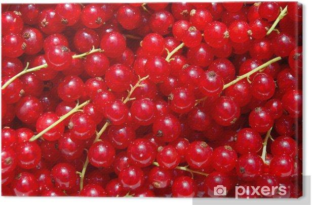 currant berries Canvas Print - Meals