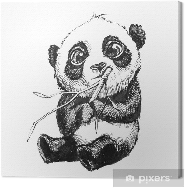 Cute Adorable Baby Panda Bear Illustration Hand Drawn Sketch Of Panda Bear Eating Bamboo Isolated On White Background Canvas Print Pixers We Live To Change