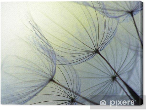 Dandelion seed Canvas Print - Landscapes