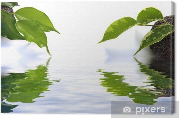Decor Zen Jardin Japonais Eau Mineral Vegetal Fond Blanc Canvas