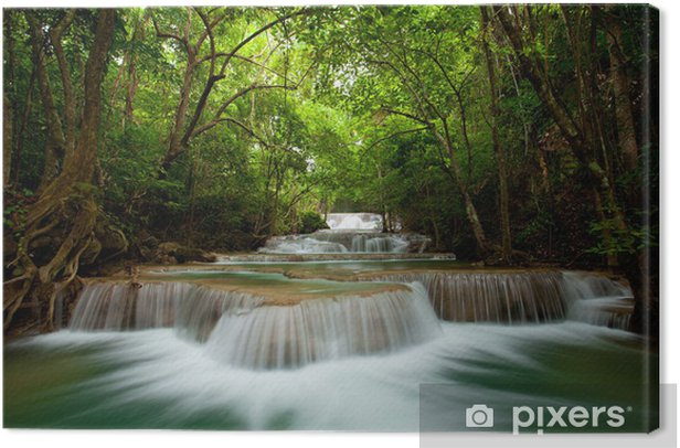 Deep forest Waterfall Canvas Print - Themes