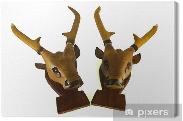 deer head isolated Canvas Print - Mammals