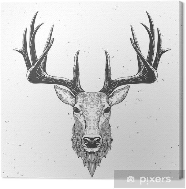 deer head on white Canvas Print - Animals