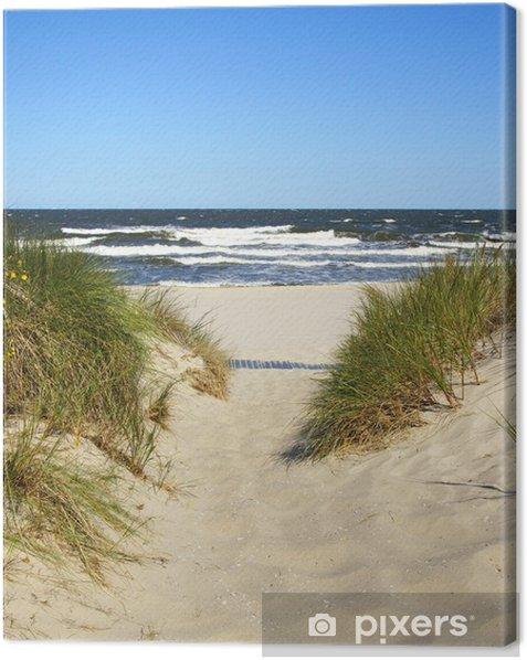 Der Weg zum Strand Canvas Print - Summer