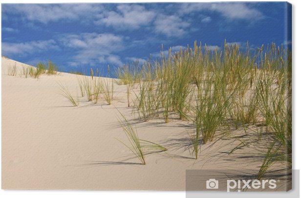 desert sand dunes Canvas Print - Natural Disasters