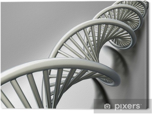 DNA Strang Canvas Print - Health and Medicine