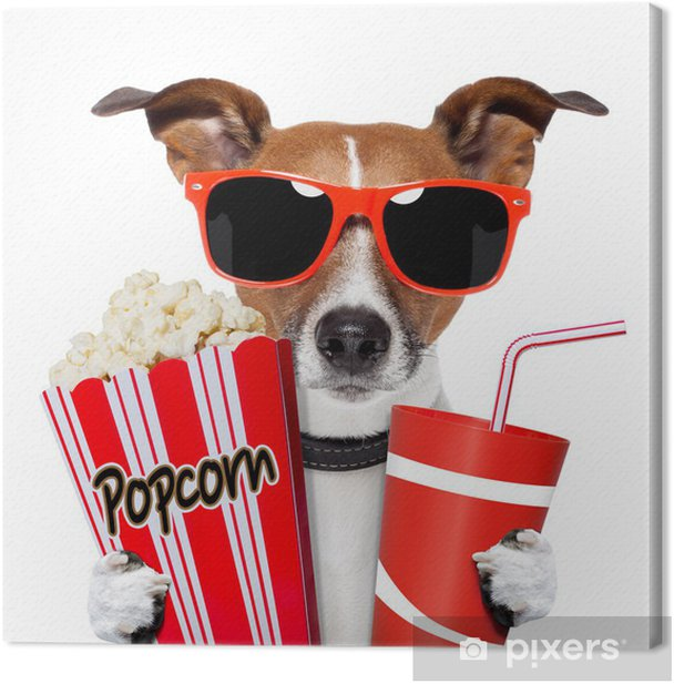 dog watching a movie Canvas Print - Wall decals
