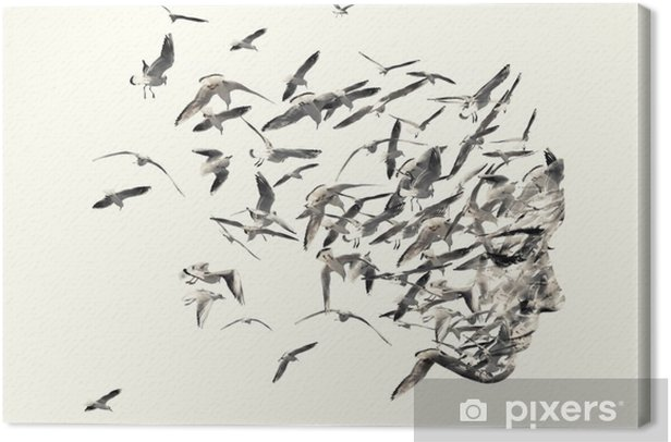 Double exposure portrait of young women and seagulls. Canvas Print - Animals