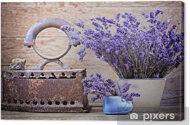 Dry lavender and rustic (rusty) iron - vintage style Canvas Print - Herbs