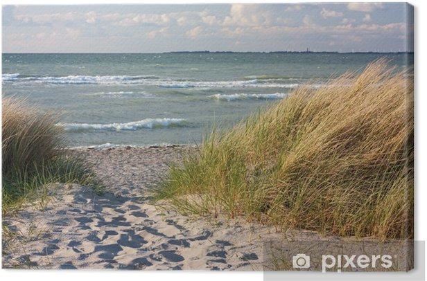 Dünenlandschaft am Strand der Ostsee bei Heiligenhafen Canvas Print - Themes