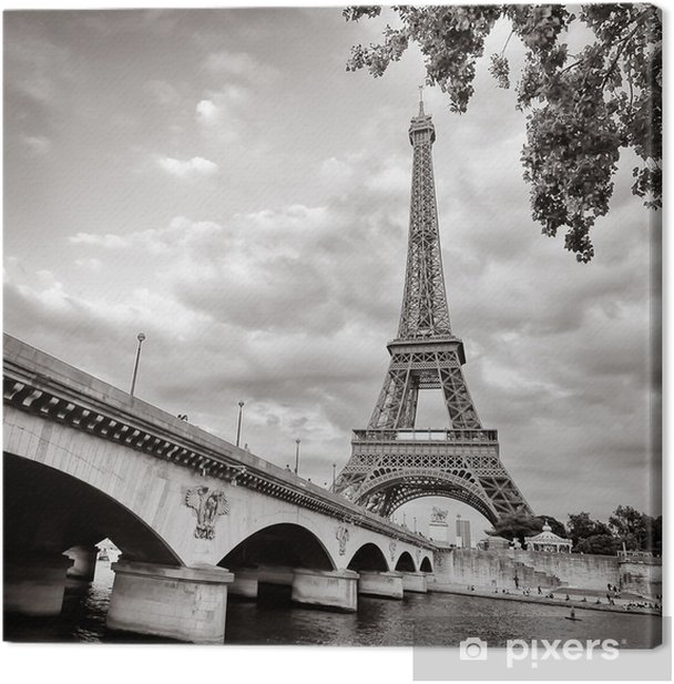 Eiffel tower view from Seine river square format Canvas Print - Themes