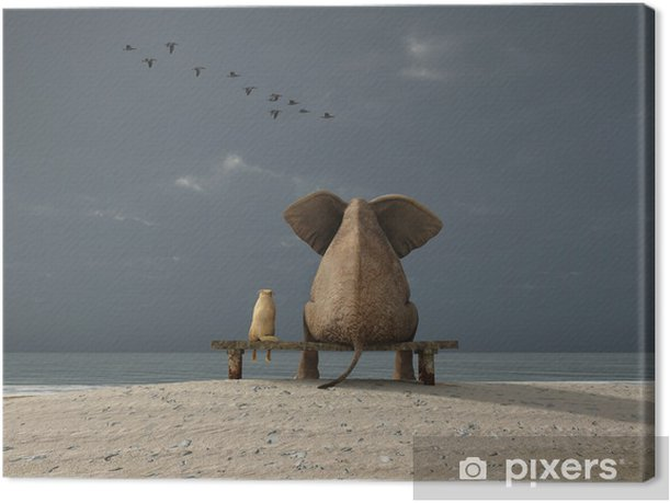 elephant and dog sit on a beach Canvas Print - iStaging