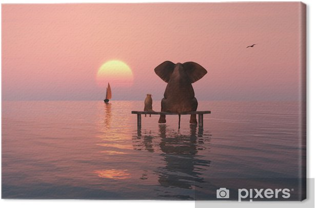 elephant and dog sitting in the middle of the sea Canvas Print - Elephants