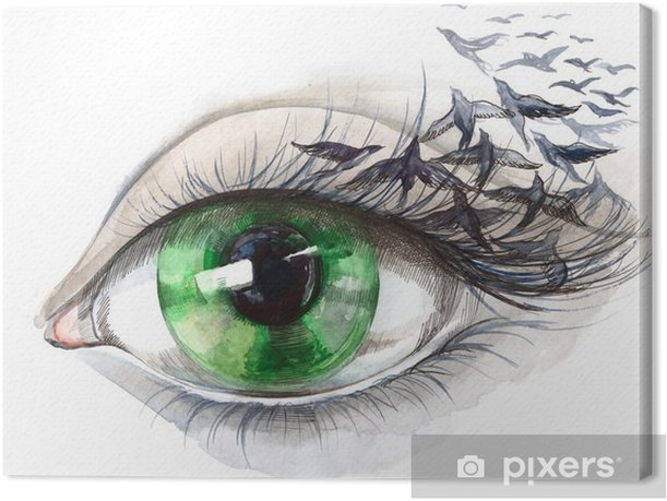 eye with birds (series C) Canvas Print - Styles