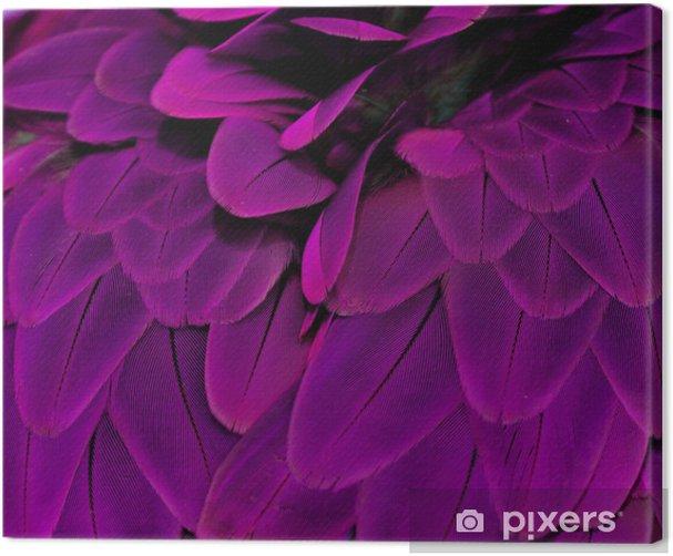 Feathers; Purple Canvas Print - Destinations