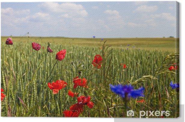 feldblumen - field flowers Canvas Print - Flowers