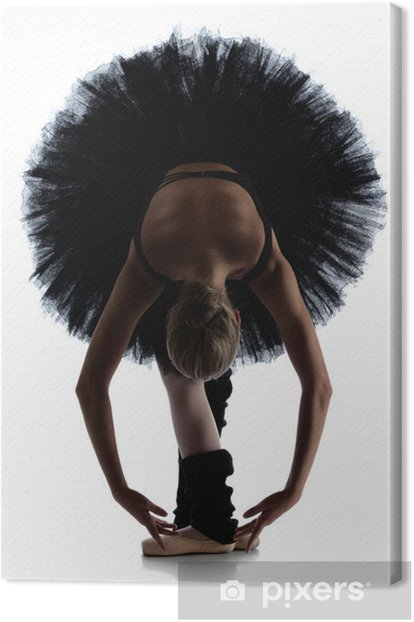 Female ballet dancer Canvas Print - Themes