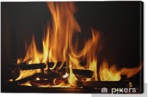 Fire in a fireplace, fire flames on a black background Canvas Print - Themes
