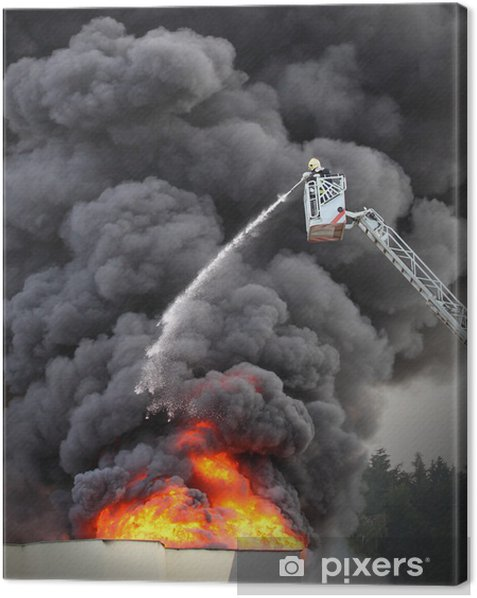 Firefighter and burning house. Canvas Print - Professions