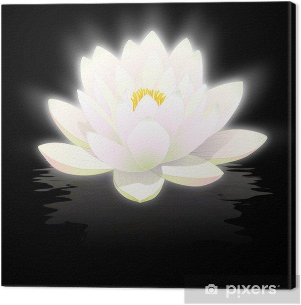 Fleur Lotus fleur de lotus blanc sur fond noir avec reflets canvas print