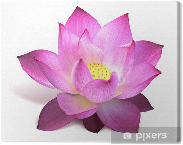 Fleur De Lotus fleur de lotus canvas print • pixers® • we live to change
