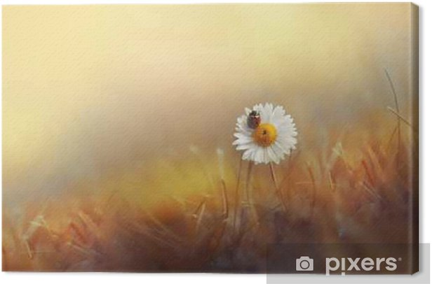 Flower daisies chamomile with ladybug in the grass on gold background summer sun at sunset in the rays of light. Beautiful elegant romantic artistic image. Wallpaper desktop, design greeting cards. Canvas Print - Plants and Flowers