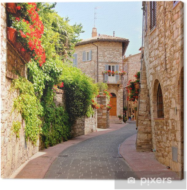 Flower lined street in the town of Assisi, Italy Canvas Print - Themes