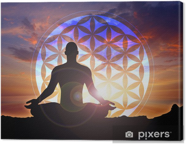 Flower of Life Canvas Print - Health