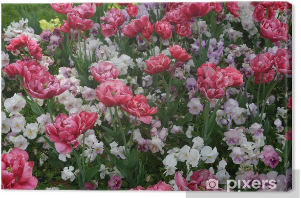 Flowers Canvas Print - Lifestyle>Body Care and Beauty