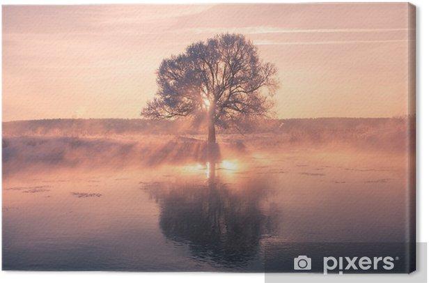 Foggy winter sunrise Canvas Print - Landscapes