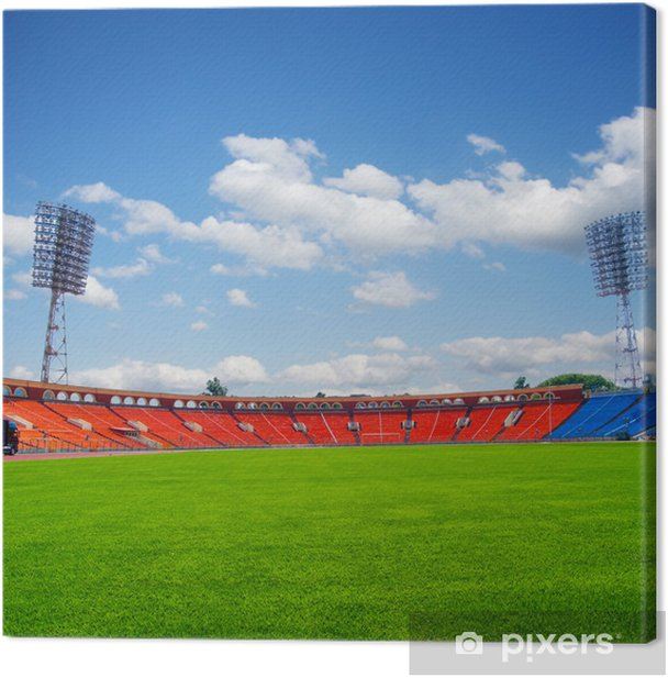 football field Canvas Print - Wonders of Nature