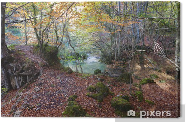 Forest and green lake.Navarra,Spain. Canvas Print - Outdoor Sports