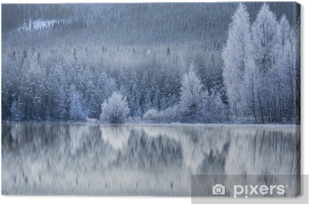 Forest reflected in frozen lake Canvas Print - Landscapes